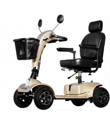 Scooter libercar Cruiser